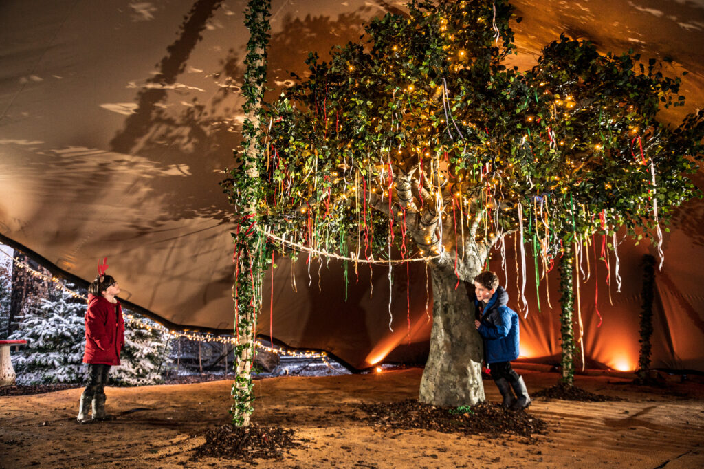 2 boys playing around a large tree with ribbons and wishes hanging off it